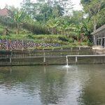 kolam pemancingan keluarga di malang